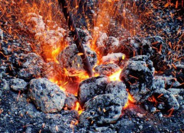 Комплекс по производству древесного угля